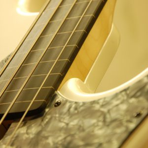 Fretless conversion